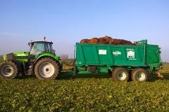 landwirtschaft1